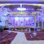 She la Vie Wedding Organizer & Decoration