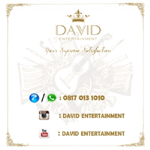 David Entertainment