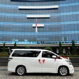 Alphard Wedding Car