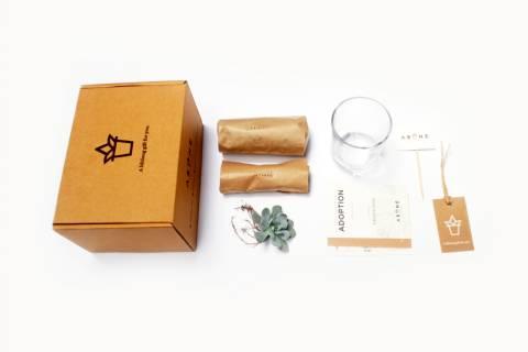 Succulent Signature Glass Planter DIY Kit  for 50pcs